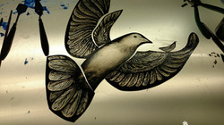 Painted dove
