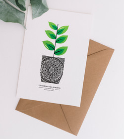 Card & Envelope ficus