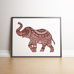 Elephant red in situ