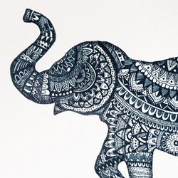 Elephant%20Blue_edited