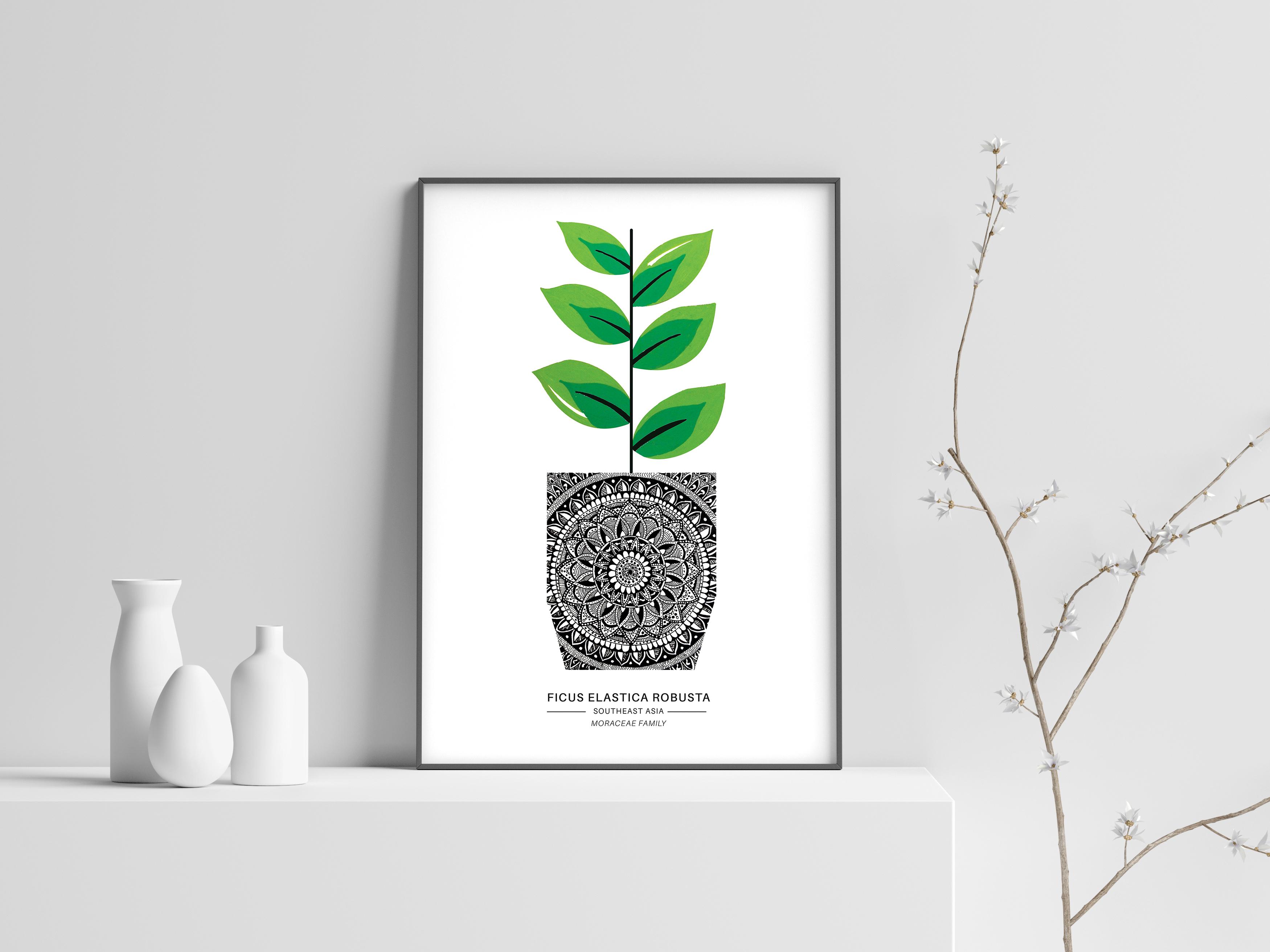 Plant1 In Situ1