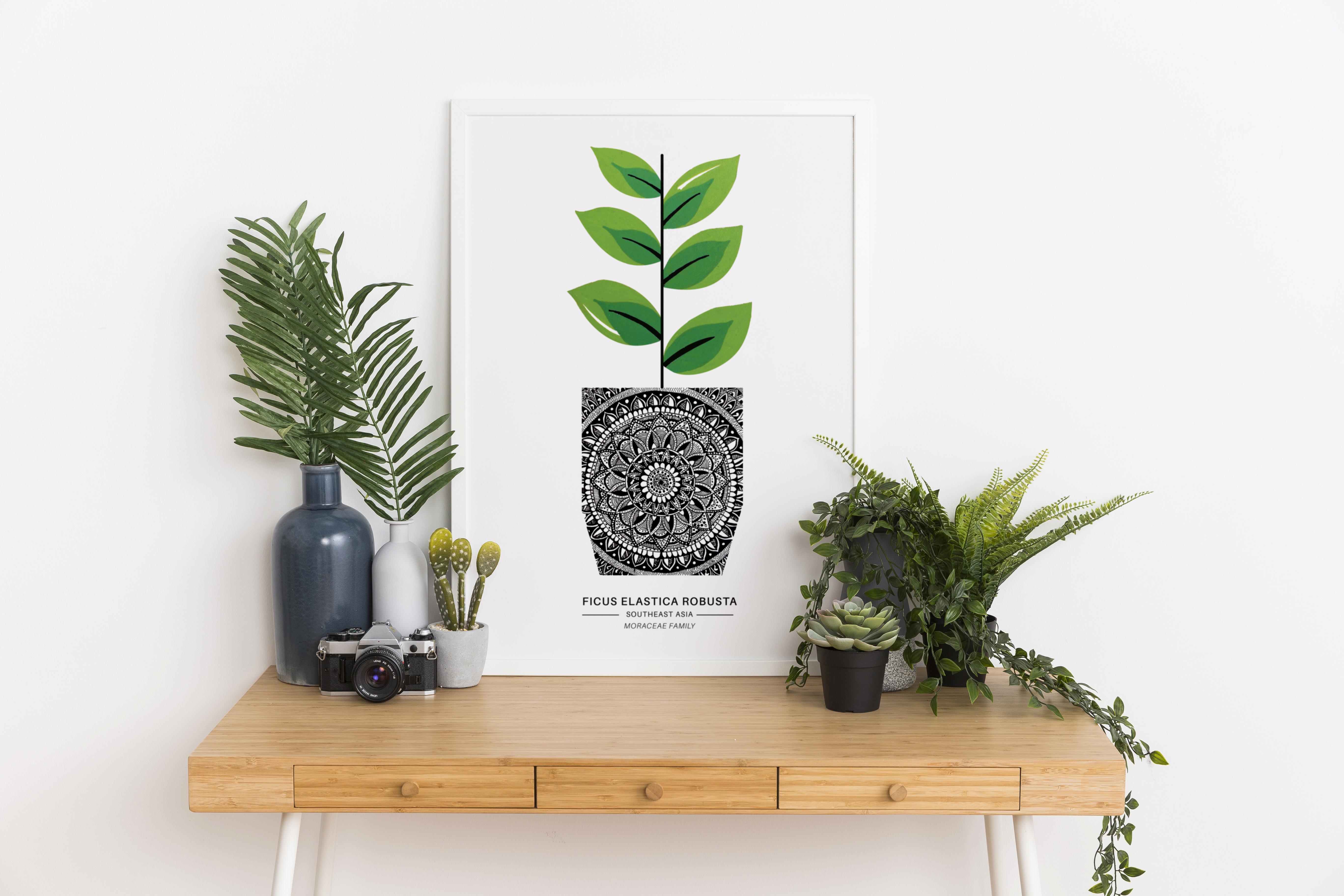 Plant1 In Situ2