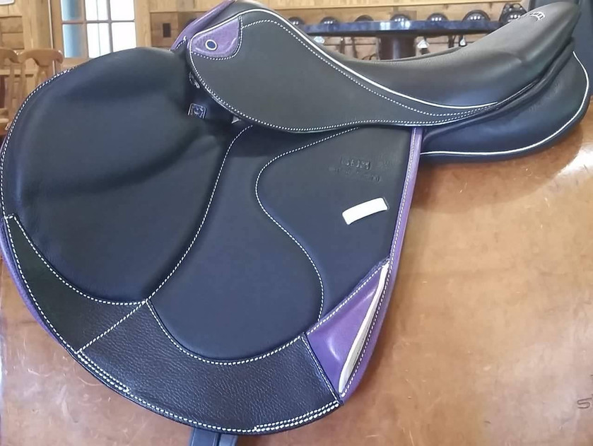 Zaria Optimum with purple and white accents