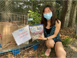 Donating to Paws Atlanta Animal Shelter