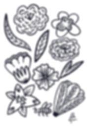 Coloriage fleurs-Lila Lefranc.jpeg