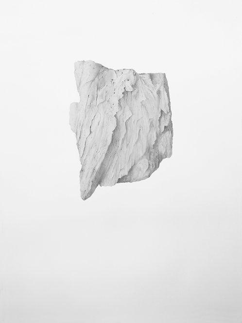 Fragmento óseo de ballena IV
