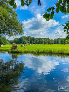 Landwirtschaft im Spreewald