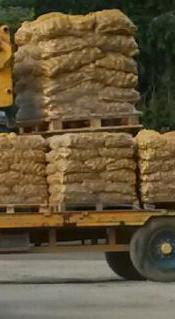 arrivee patats depot Brest 2016_edited.j