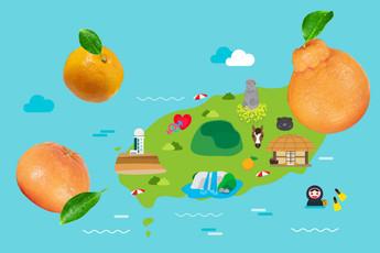 ชวนชิม ส้ม Gamgyul ทั้ง 3 ชนิดจากเกาะเชจู