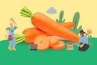 สาระน่ารู้คู่ แคร์รอต ผักสีส้มอุดมประโยชน์