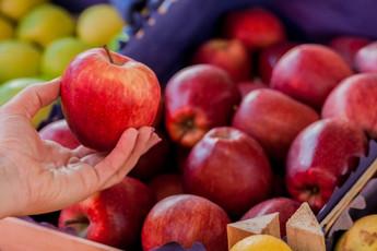 แอปเปิ้ล พันธุ์ไหนดี?