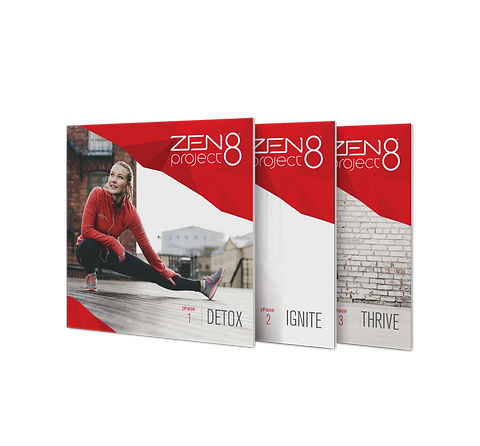 3 fases Zen project 8-1024x951.png