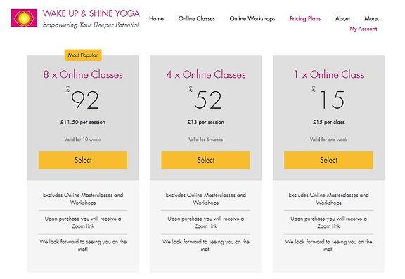 Website Pricing Plans.jpg