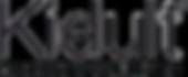 Kidult-Logo-Sito.png