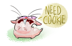 Bidi Need Cookie