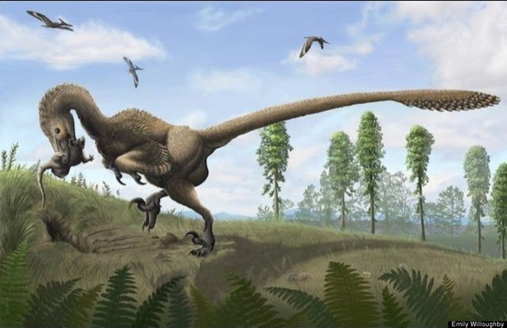 Our Fine Feathered Ancestors & Why We Think Dinosaurs had Beautiful Feathers