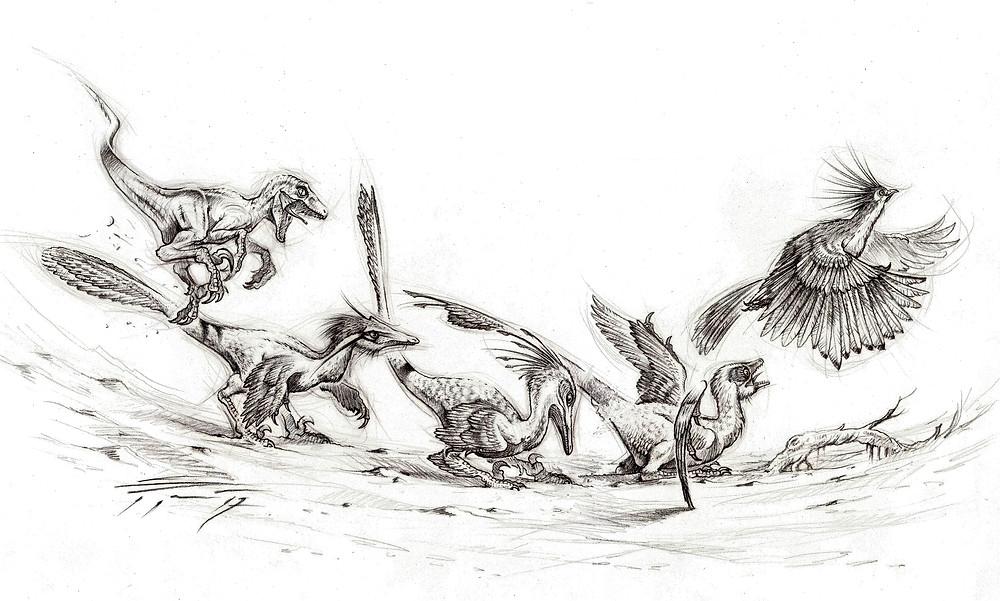 Dinosaur Evolving into Bird