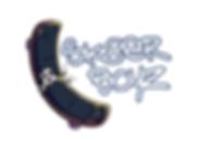 SK8ER BOYZ logo 2018 (preferred).png