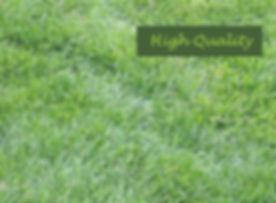 GardenHighQuality600.jpg