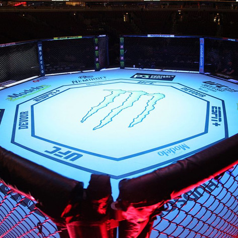 MMA Fights to Look Forward to in 2021
