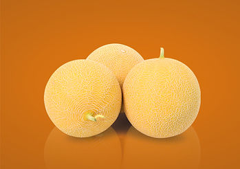 li_2019-melon ananas.jpg