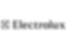 Client_logo_grayscale_Electrolux.png