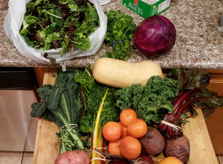 """""""Four Paths to Food Equity"""""""