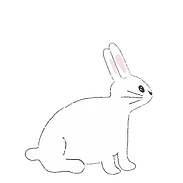 bunnyright.png