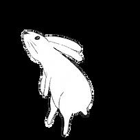 bunnyleftjump.png