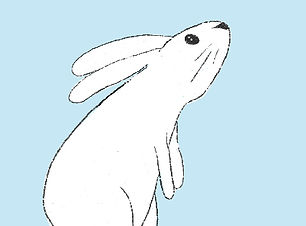 bunnyjumprightsample.jpg
