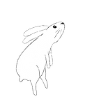 bunnyrightjump.png