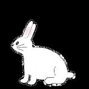 bunnyleft.png