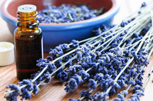 Rochester Essential Oils Images By Vincenzo