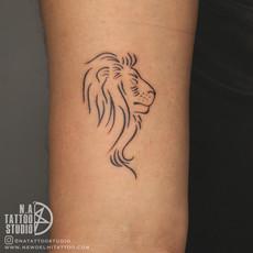 rahul lion.jpg