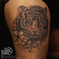 lion akansha 1.jpg