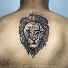 lion megha 1.jpg