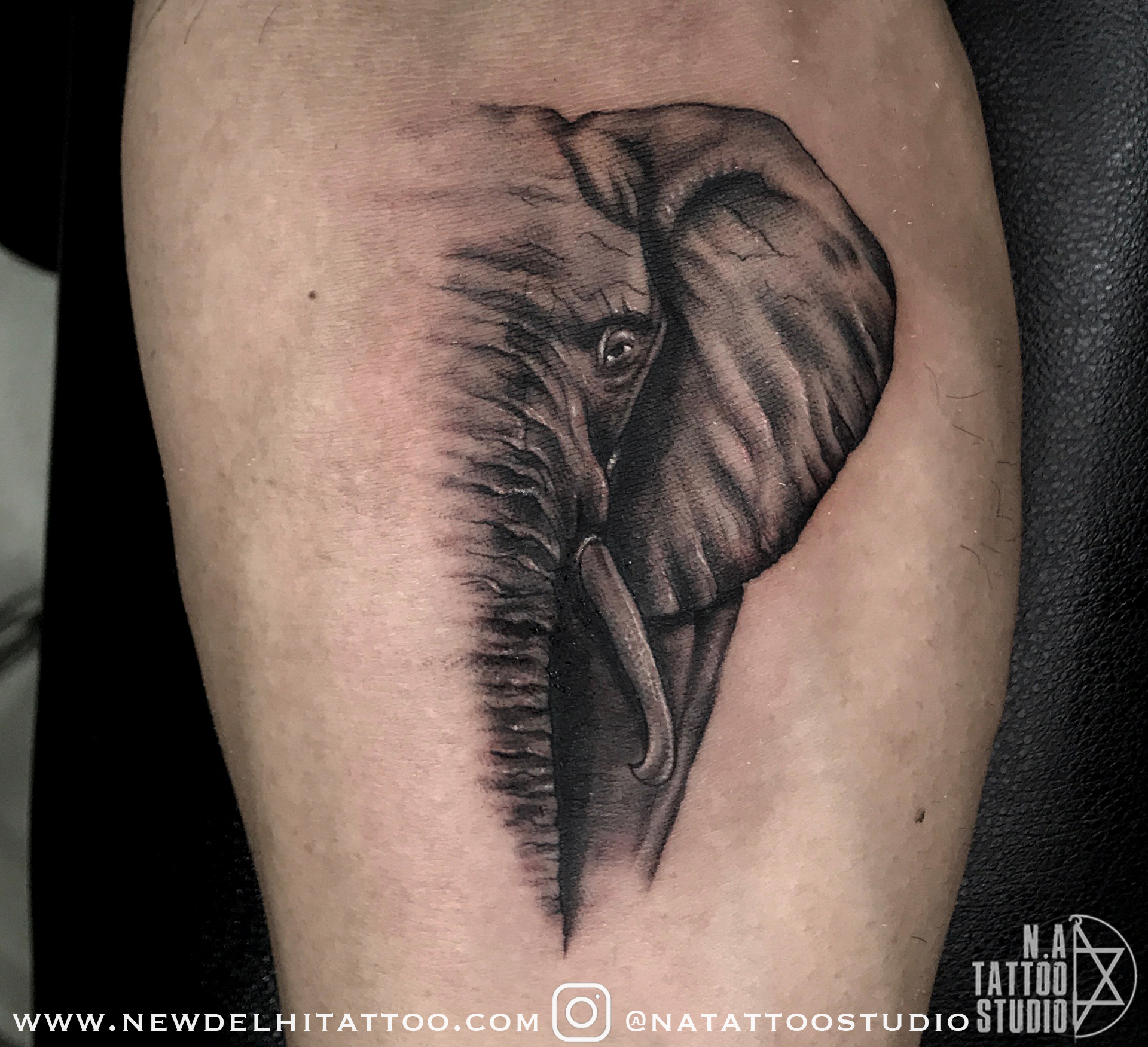 Realistic-Elephant-tattoo-natattoost
