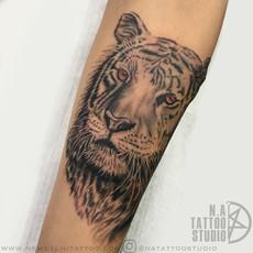 tiger tattoo design copy.jpg