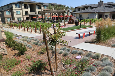 20170807_canyon ridge apts amenity area.