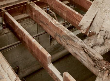 On Renovations, Both Home and Human