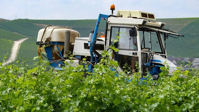 Tractor in vineyard Sancerre.jpg