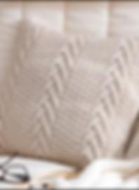 Frasher_Pillow (1).PNG