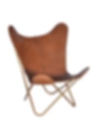 Butterfly_Chair (1).png