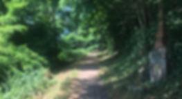 Wanderweg zur Heide in Ehrang