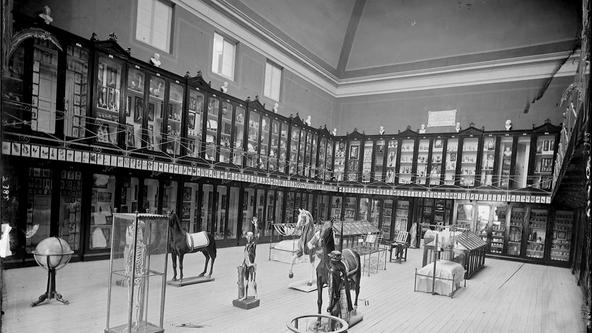 EL MUSEO ANTROPOLÓGICO HACIA 1875