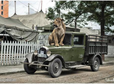 LA LEONA SHERIFF, 1956
