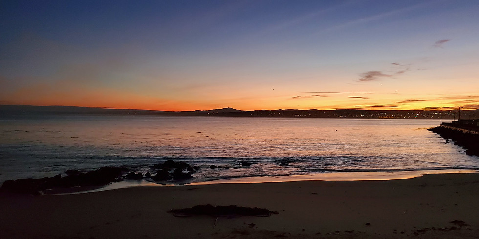 Club Dives Monterey Bay - Breakwater Cove