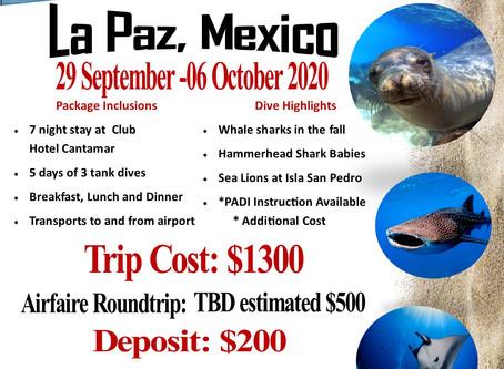 Sports Cove La Paz trip