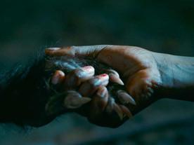 As Boas Maneiras: O horror não é emprestado, é nosso