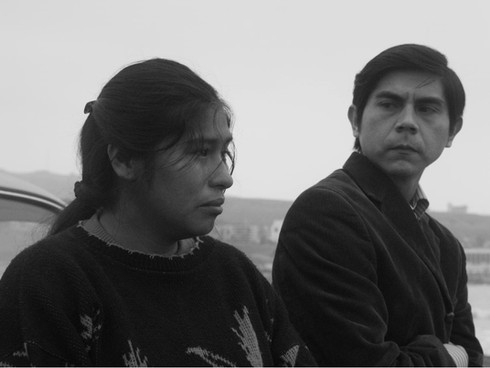 29º Cine Ceará: guia de críticas